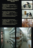 Posterele Expozitiei - 10001 Posterele Expozitiei